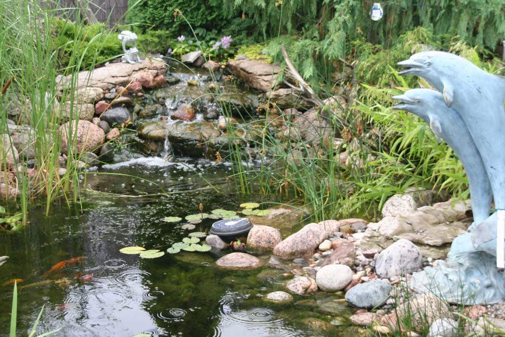后院水池-庭园设计系列图片