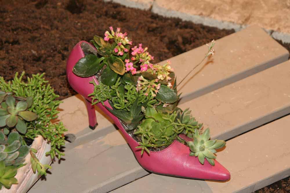 rita : 鞋子种花
