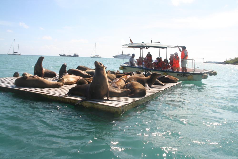 加拉巴哥群岛风光 galapagos